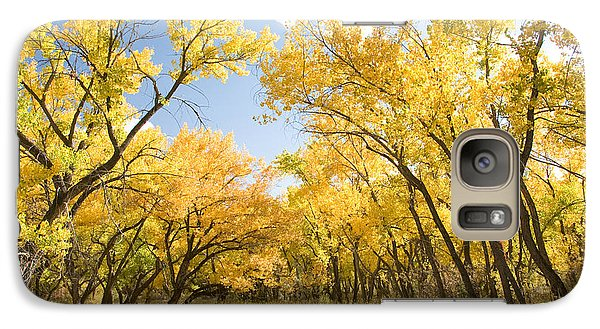 Galaxy Case featuring the photograph Fall Leaves In New Mexico by Shane Kelly