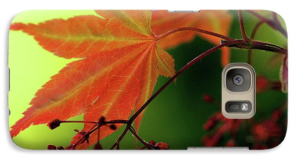 Galaxy Case featuring the photograph Fall Leaves by Michelle Joseph-Long