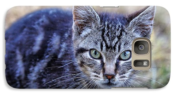 Galaxy Case featuring the photograph Feral Kitten by Chriss Pagani