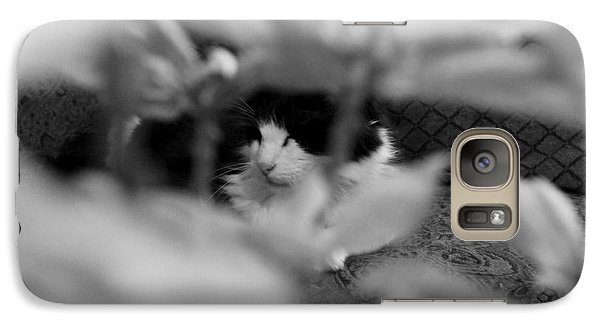 Galaxy Case featuring the photograph Find The Kitty by Jeanette C Landstrom