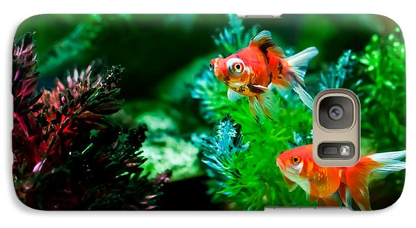 Galaxy Case featuring the photograph Fish Tank by Matt Malloy