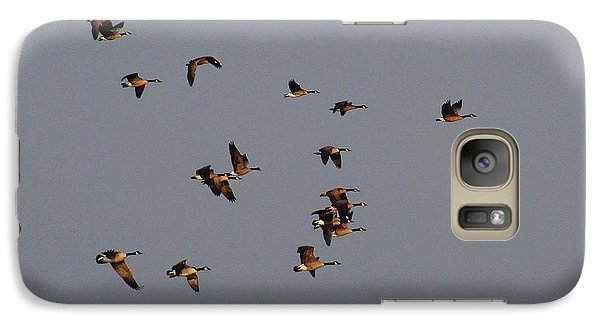 Galaxy Case featuring the photograph Flight - Near Evening by Janice Adomeit