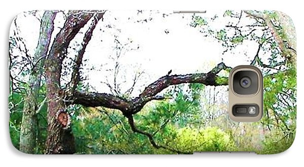 Galaxy Case featuring the photograph Flying Branch by Pamela Hyde Wilson