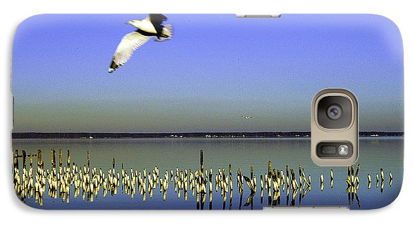 Galaxy Case featuring the photograph Flying Solo by Clayton Bruster