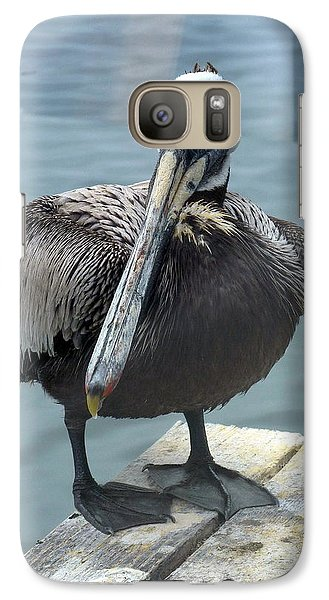 Galaxy Case featuring the photograph Friendly Pelican by Carla Parris