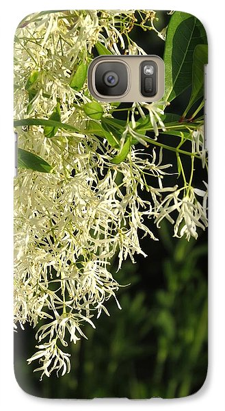 Galaxy Case featuring the photograph Fringe Tree by Rebecca Overton