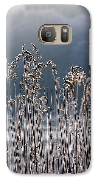 Galaxy Case featuring the photograph Frozen Reeds At The Shore Of A Lake by John Short