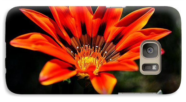 Galaxy Case featuring the photograph Gazania Krebsiana Flower by Werner Lehmann