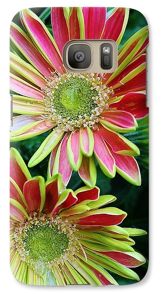 Galaxy Case featuring the photograph Gerber Daisies by Bruce Bley