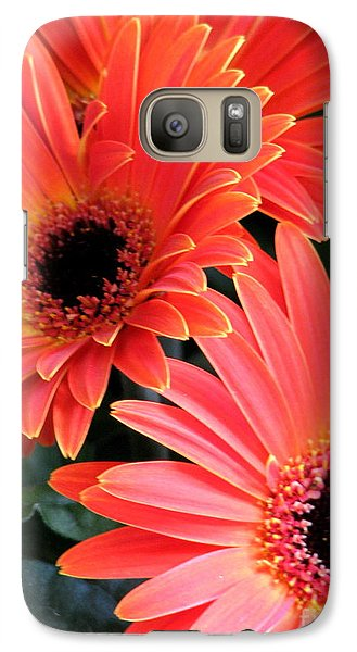 Galaxy Case featuring the photograph Gerbera Bliss by Rory Sagner