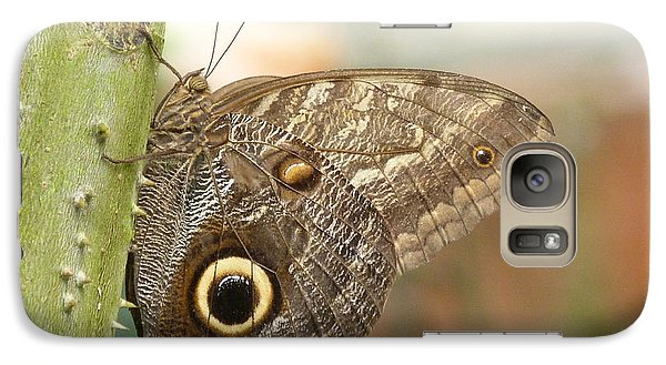 Galaxy Case featuring the photograph Giant Owl Butterfly by Lynn Bolt