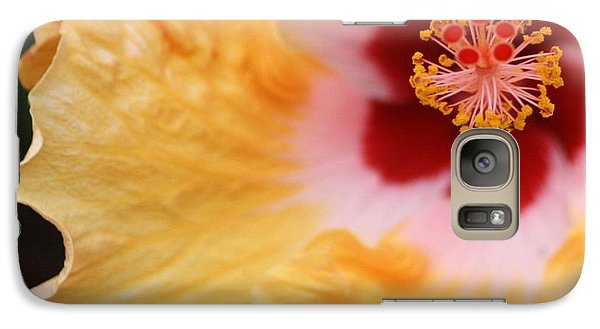 Galaxy Case featuring the photograph Golden And Crimson Hibiscus by Donna Smith