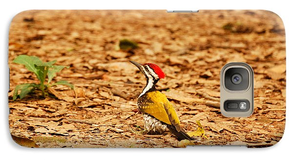 Galaxy Case featuring the photograph Golden Backed Woodpecker by Fotosas Photography