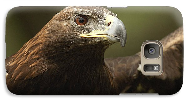 Galaxy Case featuring the photograph Golden Eagle by Doug Herr