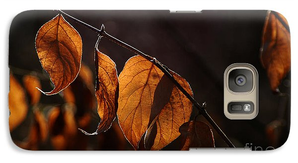 Galaxy Case featuring the photograph Golden Leaves by Vilas Malankar
