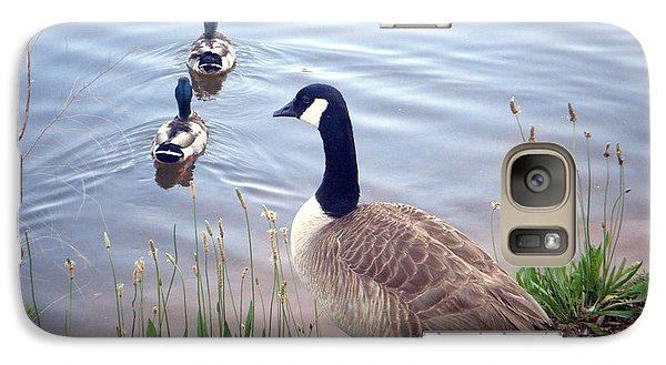 Galaxy Case featuring the photograph Goose And Ducks by Kelly Hazel