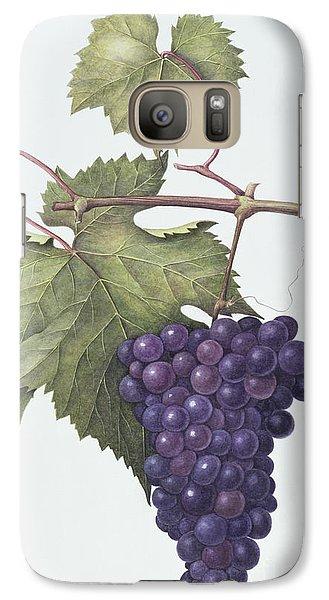 Grapes  Galaxy S7 Case by Margaret Ann Eden
