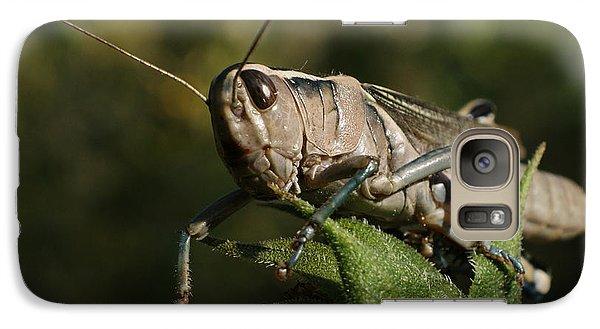Grasshopper 2 Galaxy S7 Case by Ernie Echols
