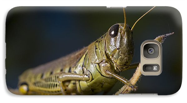 Galaxy Case featuring the photograph Grasshopper by Art Whitton