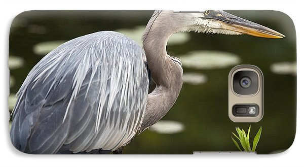 Galaxy Case featuring the photograph Great Blue Heron  by Jeannette Hunt