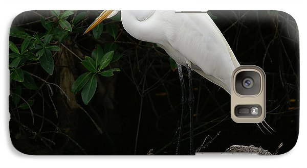 Galaxy Case featuring the photograph Great Egret by Anne Rodkin