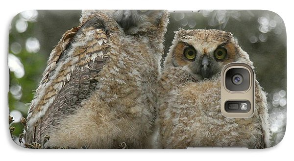 Galaxy Case featuring the photograph Great Horned Owl Babies by Myrna Bradshaw