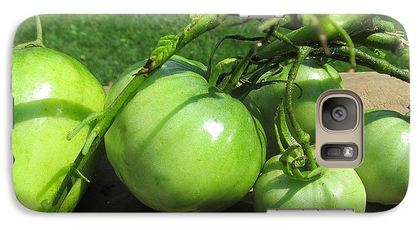 Galaxy Case featuring the photograph Green Tomatoes 2 by Tina M Wenger