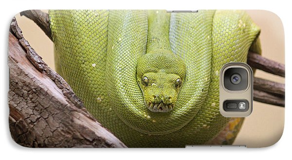 Green Tree Python Galaxy S7 Case by Suzanne Gaff