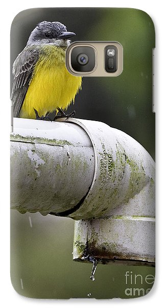 Grey-capped Flycatcher Galaxy S7 Case
