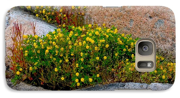 Galaxy Case featuring the photograph Growing In The Cracks by Brent L Ander