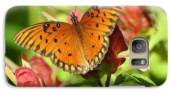 Galaxy Case featuring the photograph Gulf Fritillary Butterfly On Flower by Jodi Terracina