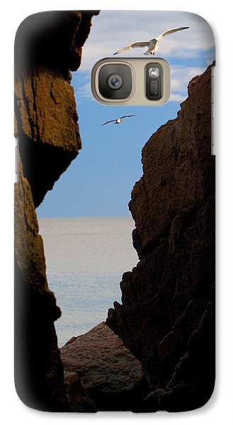 Galaxy Case featuring the photograph Gulls Of Acadia by Brent L Ander