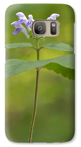Galaxy Case featuring the photograph Hairy Skullcap II by JD Grimes