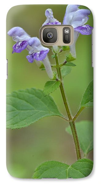 Galaxy Case featuring the photograph Hairy Skullcap by JD Grimes