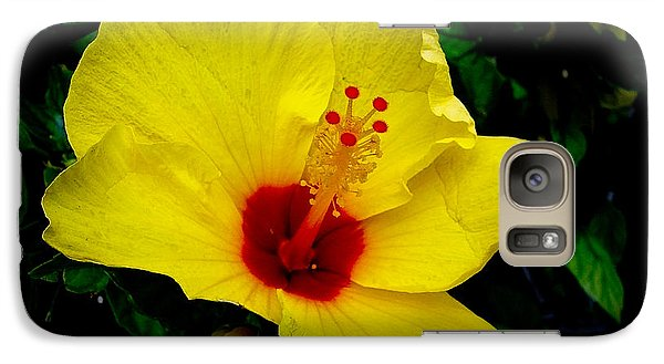 Galaxy Case featuring the photograph Hawaiian Yellow Hibiscus by Athena Mckinzie