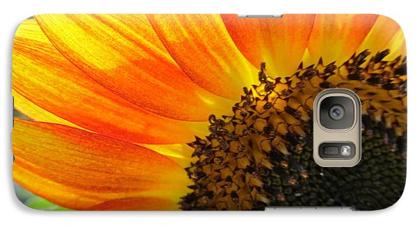 Galaxy Case featuring the photograph Hello Sunflower by Tina M Wenger