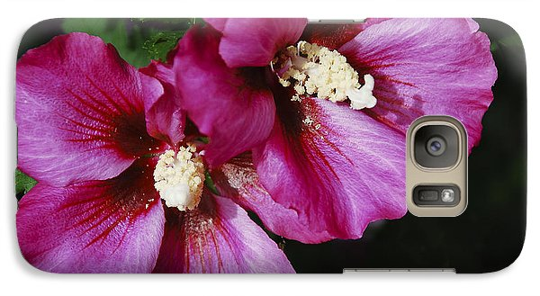 Galaxy Case featuring the photograph Hibiscus Flowers by Janice Adomeit