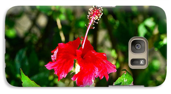 Galaxy Case featuring the photograph Hibiscus by Pravine Chester