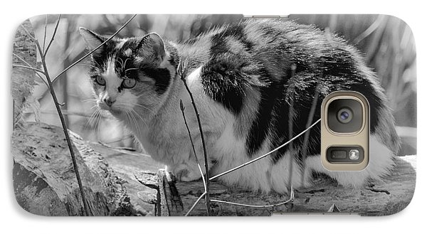 Galaxy Case featuring the photograph Hiding by Eunice Gibb