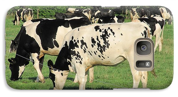 Galaxy Case featuring the photograph Holsteins by Tina M Wenger