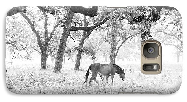 Galaxy Case featuring the photograph Horse In Foggy Field Of Oaks by CML Brown