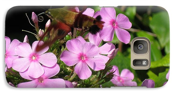 Galaxy Case featuring the photograph Hummingbird Moth  by Nancy Patterson