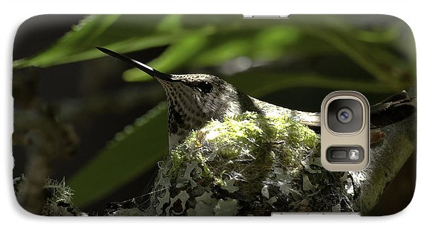 Galaxy Case featuring the photograph Hummingbird On Nest by Betty Depee