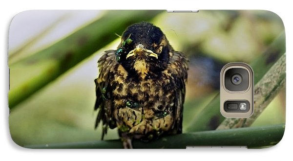 Galaxy Case featuring the photograph I Hate My Life - American Robin by James Ahn