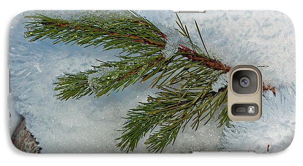Galaxy Case featuring the photograph Ice Crystals And Pine Needles by Tikvah's Hope