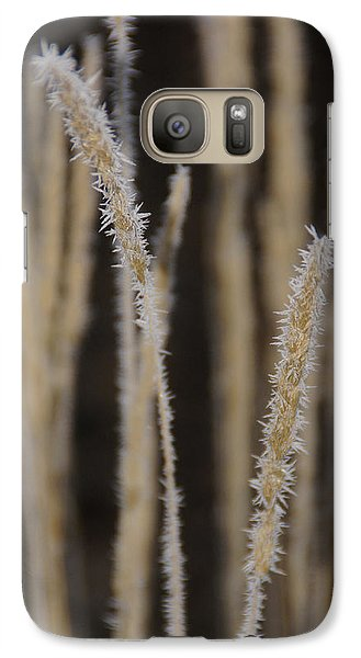 Galaxy Case featuring the photograph Ice Crystals On Tall Grass by Mick Anderson