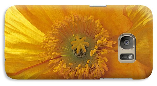 Galaxy Case featuring the photograph Iceland Poppy 4 by Susan Rovira