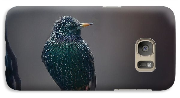 Starlings Galaxy S7 Case - Infamous by Susan Capuano