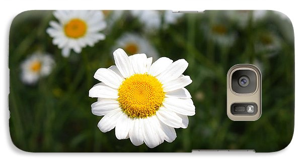 Galaxy Case featuring the photograph Isn't That A Daisy by Tony Cooper
