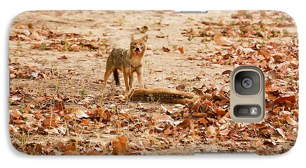 Galaxy Case featuring the photograph Jackal Standing Over Deer Kill by Fotosas Photography